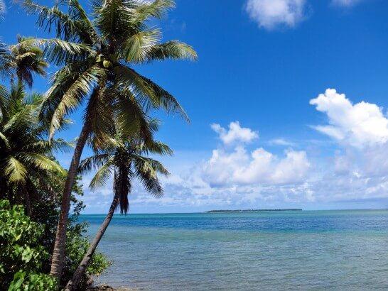 グアムのヤシの実と海