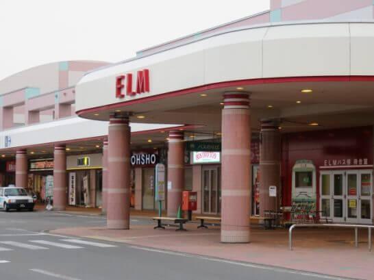 ELM(エルム)