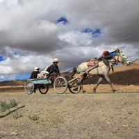 Carriage on Friendship Highway, Tibet