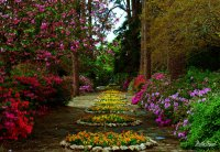 Jasmine Hill Gardens | Mattie Bryant Photography