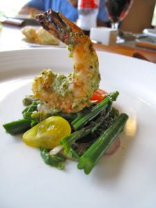 Grilled Pesto Shrimp and Pohole Fern Salad