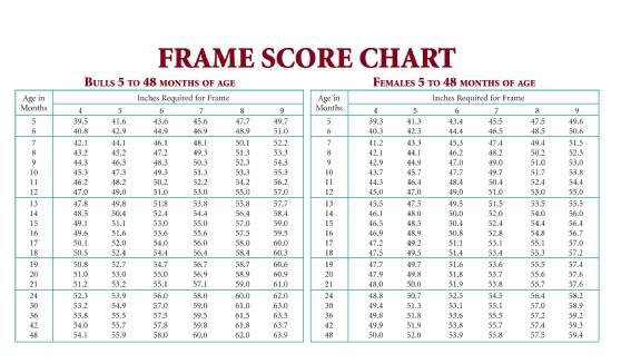 T Score Chart - Arenda-stroy