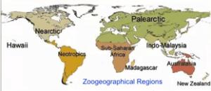 Roz 3 World Map