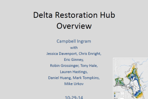Delta Restoration Hub open slide