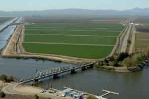 DWR Delta hwy 4 bridge #3