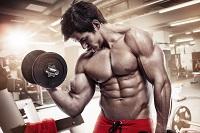 Что влияет на развитие быстрых мышц и что лучше гипертрофия или гиперплазия?