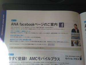 ANA-Photo-300x225