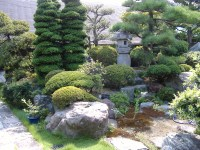 Buddhist ceremony, traditional japanese garden, | Max's ...