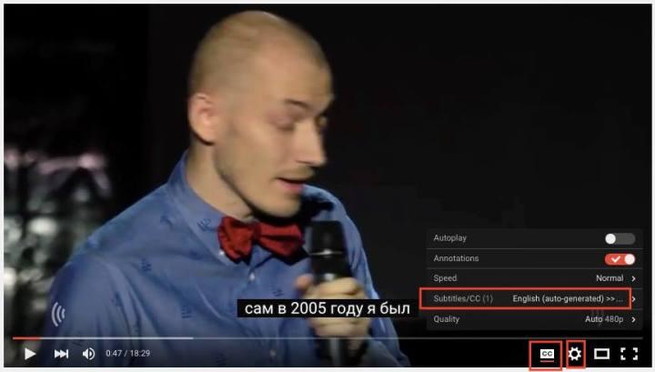 youtube-subtitles-screenshot