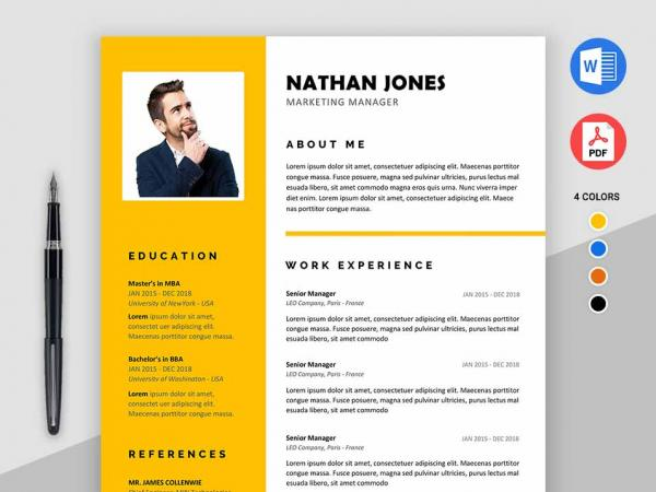 Free Resume Templates MS Word PDF Download in 1 Minute! 2019