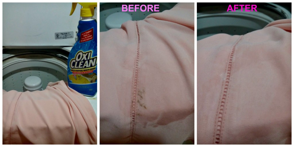 Oxi Clean Stain remover spray