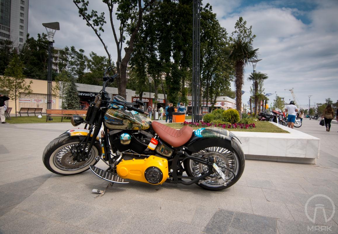 Beach bike (2)