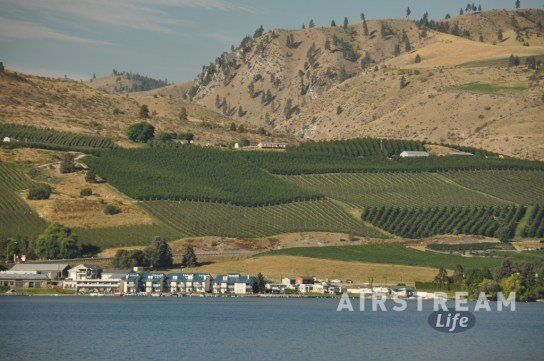 Chelan WA vineyards