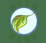 new bruns network logo
