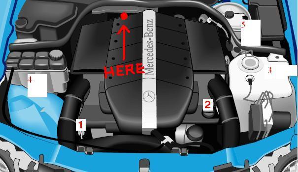 Diagram of the V8 engine - MBWorldorg Forums