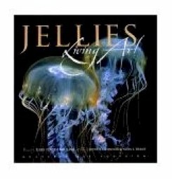 jelly art cover