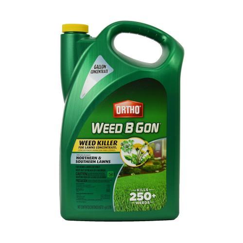 Medium Of Ortho Weed B Gone