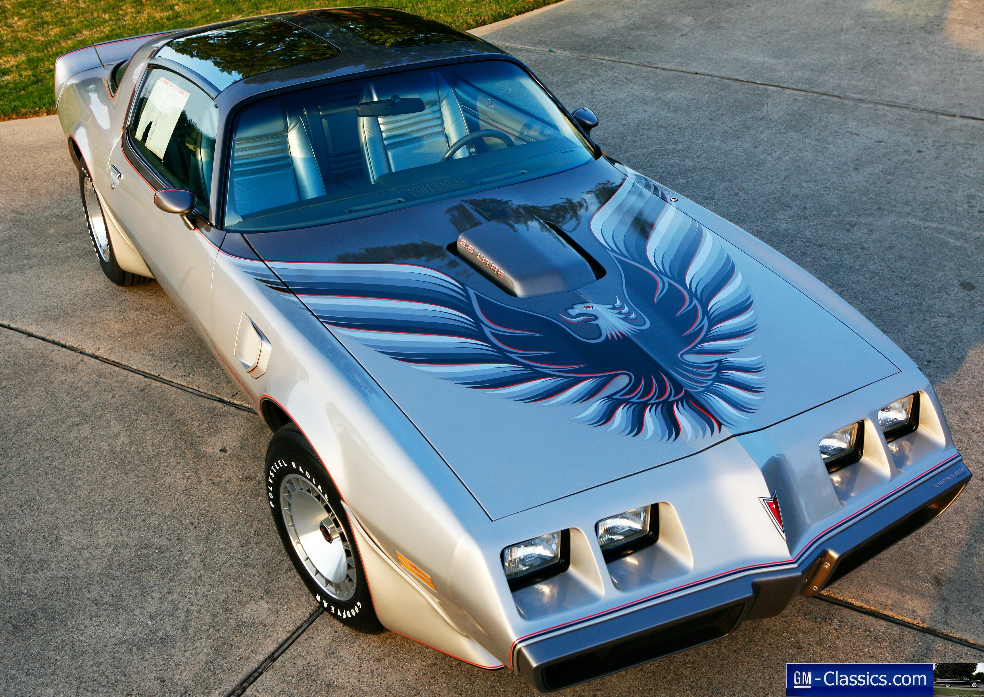 1979 Trans Am Picture 1979 Pontiac Trans Am Matt Garrett