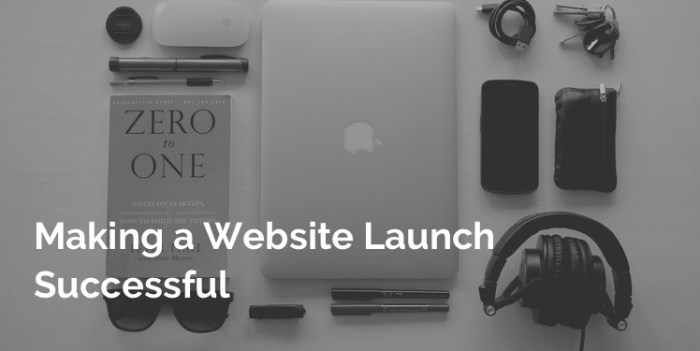 successfully launch a new website