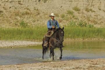 North_Dakota_Western_Culture_Cowboy_GK