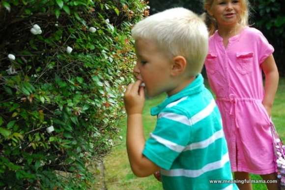 1-#marshmallow picking #ideas #creative #kids-023