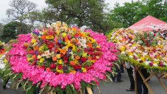 La Feria de Las Flores 2016 Schedule of Events