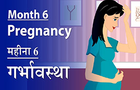 6 Month Baby Weight In Pregnancy Displaying Items By Tag 6th Month Pregnancy Baby Weight