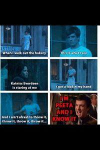 Hunger Games bedroom ideas on Pinterest   Hunger Games ...