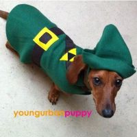 LINK from Nintendo Legend of Zelda Dog Costume