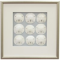 Sand Dollar Framed Wall Art II | beach house decor | Pinterest