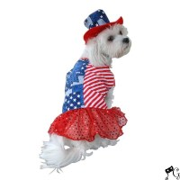Patriotic Dress Dog Costume   Pets in clothes   Pinterest