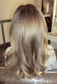Natural Light Brown / Dark Blonde | Hair Color: Natural ...