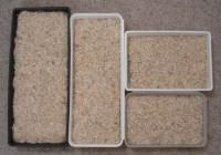 pig litter box solutions- long thin pan?   good ideas ...