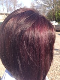 Mahogany Violet Hair Color Dark Brown Hairs Of Mahogany ...