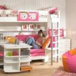 Loft Bunk Bed Idea