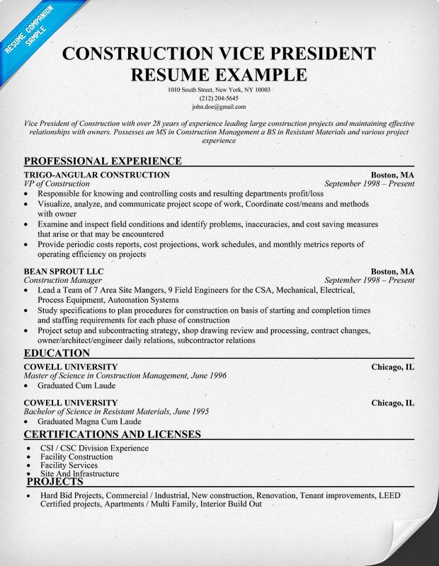 construction vice president resume samples