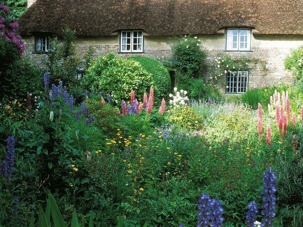 Cottage garden lovely