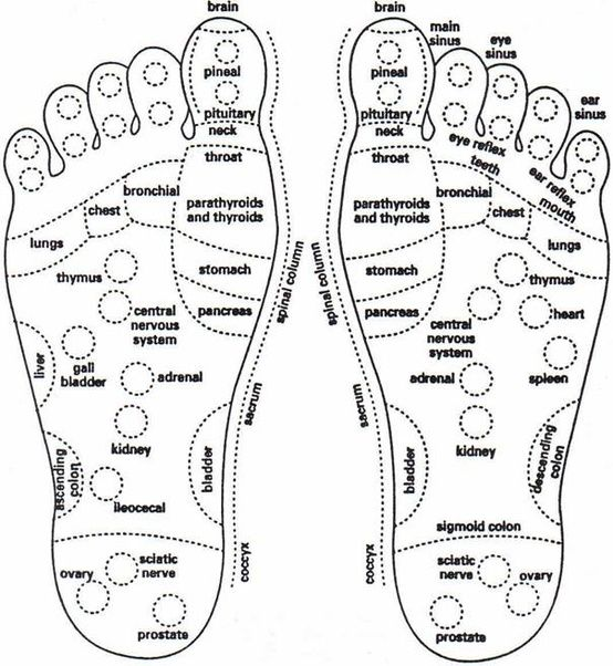 foot diagram essential oils