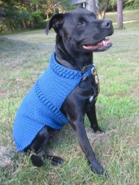 Dog Coat -Large dog sweater- DARK BLUE - LARGE