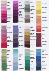 dessy color swatches