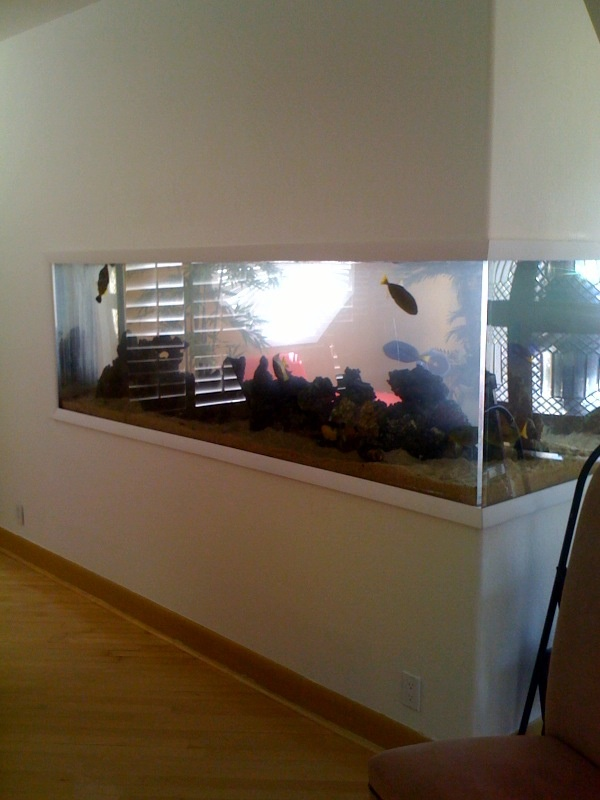 20 gallon fish tank 400 building a stand for a 400 for 20 gallon saltwater fish tank