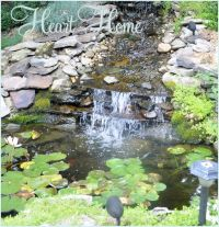 DIY Backyard Waterfall & Pond!