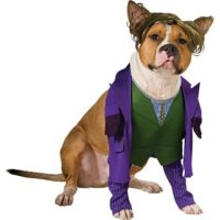 The Joker Dog Costume - Batman