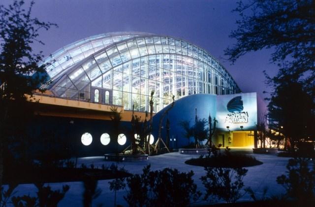 Tampa Aquarium | Places I've been | Pinterest