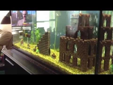 Quotes About Fish Tanks. QuotesGram