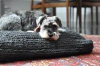Crocheted dog bed   Modern Crochet   Pinterest