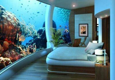 Aqarium wall bedroom | Cool  fish tanks I want | Pinterest