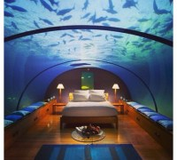 Bill Gates Living Room Aquarium