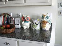 owl kitchen decor - Google Search | Do*what*makes*you ...