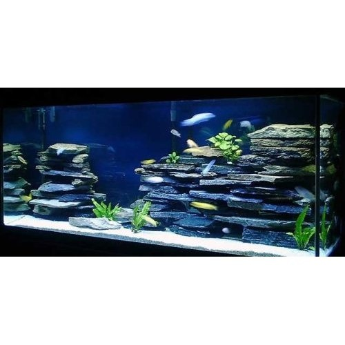 Fish tank decorations large large aquarium decorations for Tall fish tank decorations